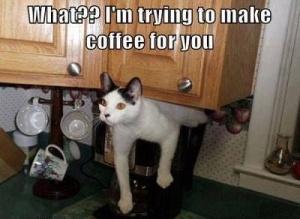 coffeecap