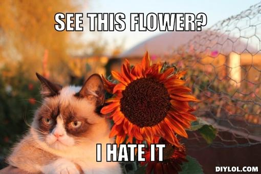 flowers meme
