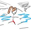 wind race