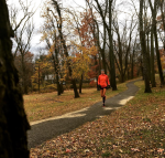 Training: Easy Runs and a Turkey Trot