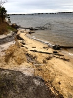 Exploring Cattus Island Park in Toms River